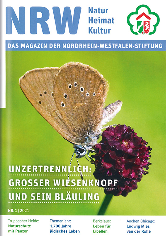 Beilage Nordrhein-Westfalen-Stiftung